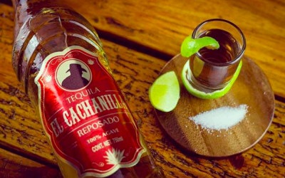 Tequila Cachanilla: The Tequila from Baja